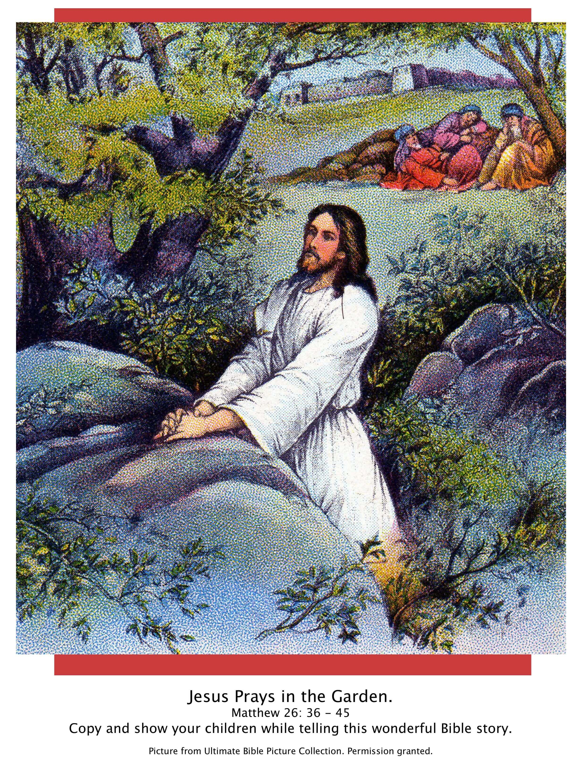 Bible Story Pictures Jesus In The Garden Of Gethsemane The Scripture Lady
