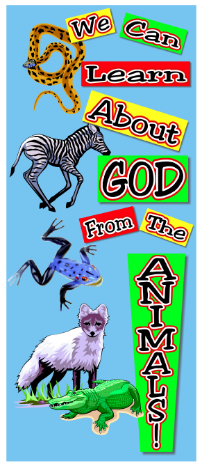 Scripture Lady's Bible Song Program: We Can Learn About God from the Animals