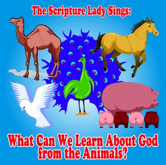 What Can We Learn About God from the Animals Preschool Bible Program